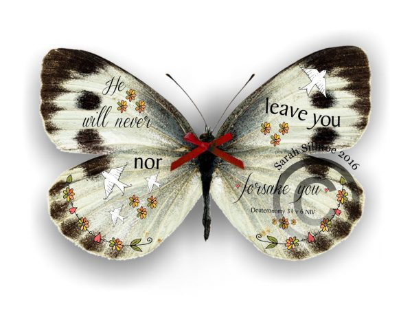 Picture Heart 3D Butterfly Gift