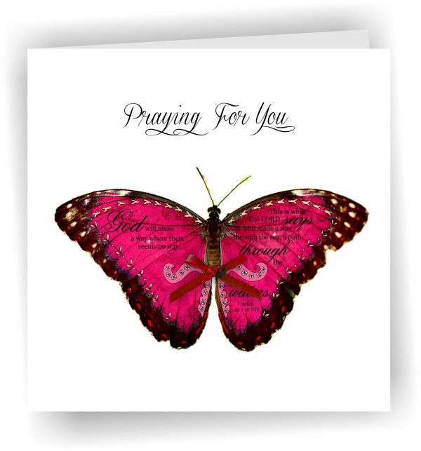 Praying for you Butterfly With Isaiah 43 v 16
