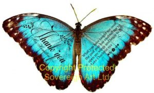 Teaching Assistant Teacher Personalised Butterfly 3D Print Gift 1