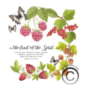 Fruit Of The Spirit Galatians 5 v 22-23