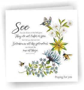 Card Bees and Wildflowers Matthew 6 v 28 to 29 Praying For You