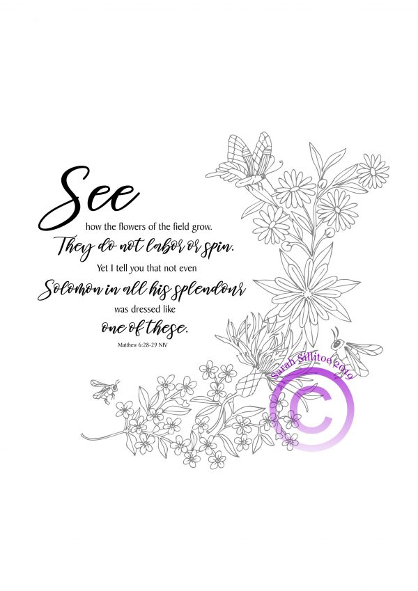 PDF Artwork Bees and Wildflowers Matthew 6 v 28 to 29 Black Text Grey Picture