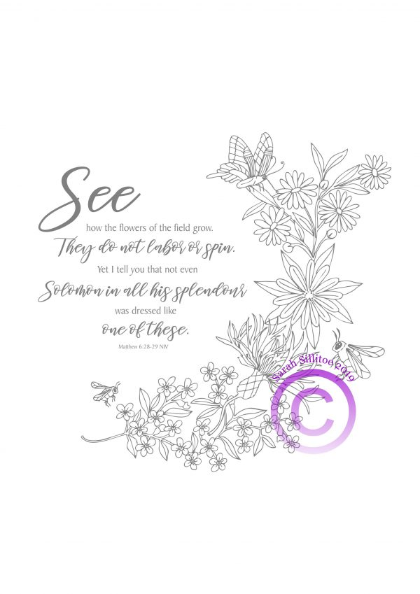 PDF Artwork Bees and Wildflowers Matthew 6 v 28 to 29 Grey Text Grey Picture